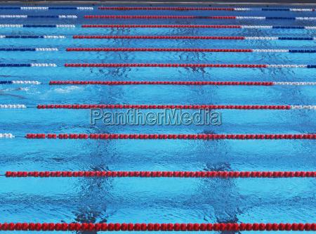 deporte deportes ejercicio piscina natacion practica