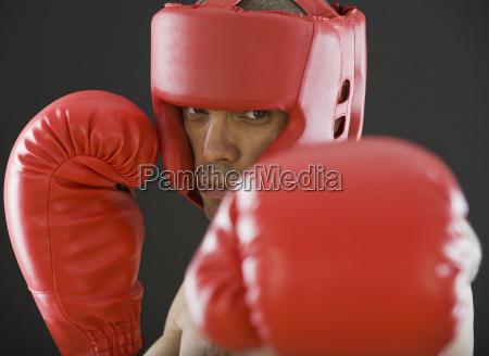 primer, plano, de, boxeador, masculino, hispano - 24065634