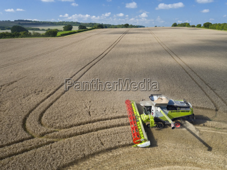 aerial view of combine harvester harvesting