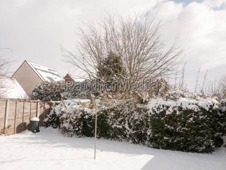white snow covering back garden hedge