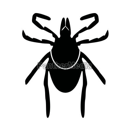 peligro color riesgo insecto negro error