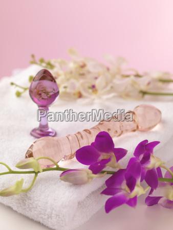 vidrio vaso interior interior de fotos