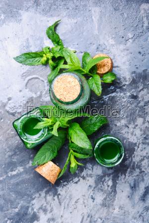 botella medicina menta esencial aceite herbalista