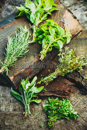 fresh herbs on wood