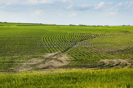 azul agricola color horizonte americano verde
