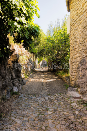 long small cobblestone alley in the