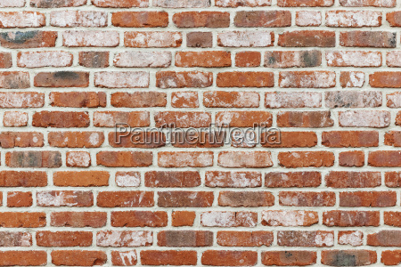 klink primera pared