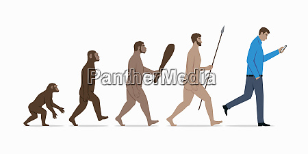 stages in evolution from ape to