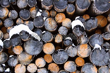 pila abstracta de troncos durante el