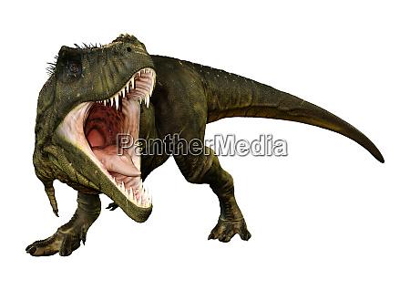 3d de renderizado tyrannosaurus rex en