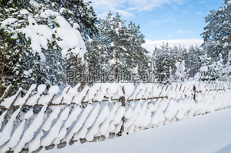 snow covered landscape in the countryside