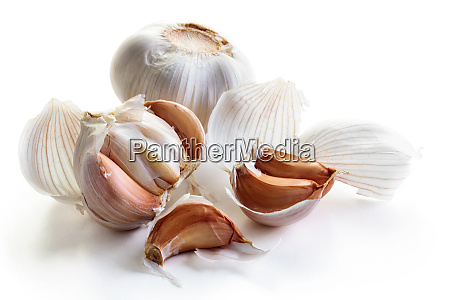 fresh garlic with clove
