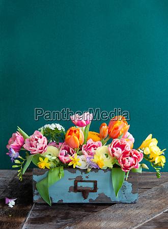 coloridas flores de primavera