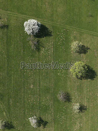 aerial view rural green field and