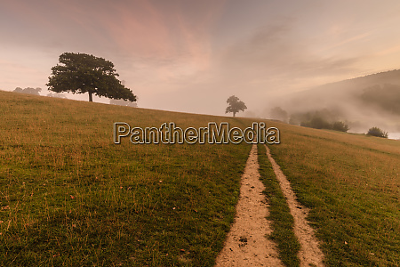 early autumn fall mist dawn chatsworth