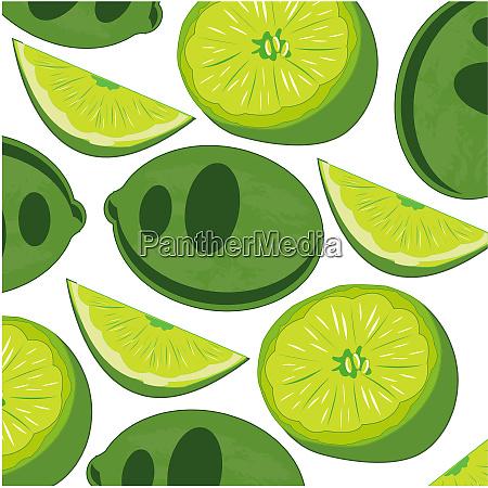 patron de cal de frutas sobre