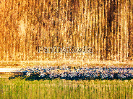 agricultural fields top view dirt rural