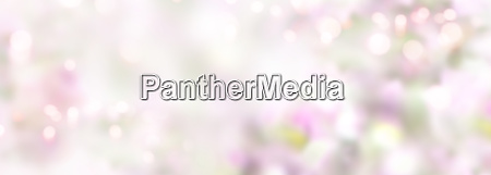 abstract tender pink spring background