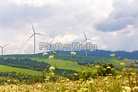 wind turbines on beautiful sunny summer