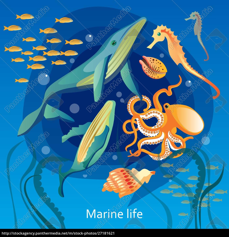 fondo, de, vida, submarina, oceánica., ilustración - 27181621