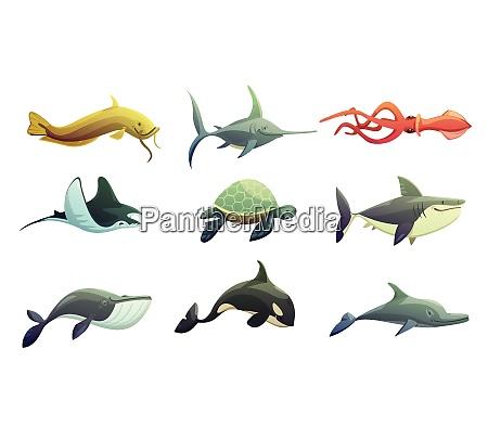animales submarinos oceanicos dibujos animados personajes