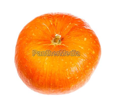 ripe orange pumpkin head isolated on