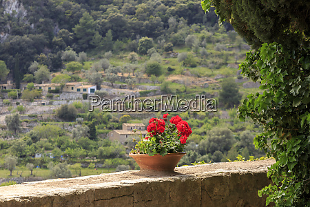 spain balearic islands mallorca valldemossa the