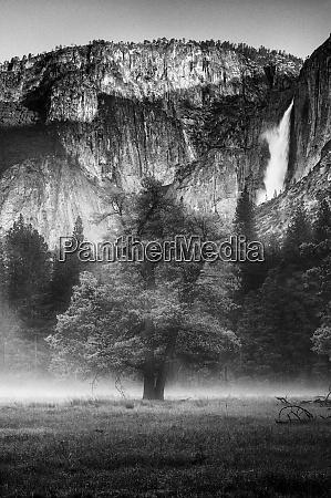 usa california parque nacional yosemite imagen