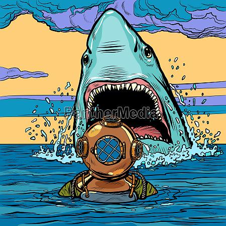 shark, attack, on, diver - 27391982