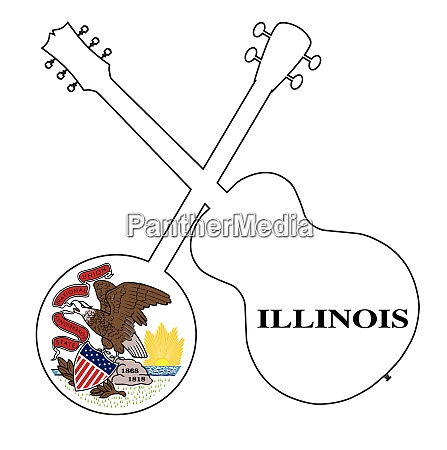 illinois state flag banjo and guitar