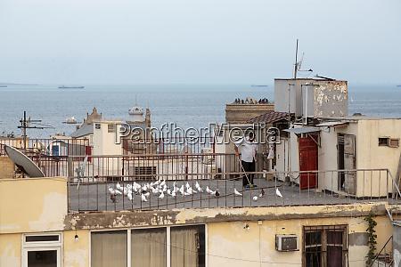 azerbaiyán, bakú., un, hombre, barriendo, su, cubierta - 27687432
