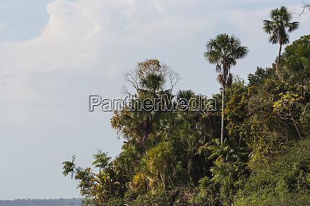 america del sur brasil rio amazonas