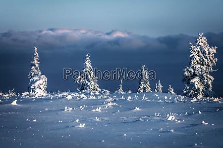 hermoso paisaje invernal