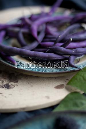 moras, de, comida, púrpura, frijoles, y, salvia - 28056888