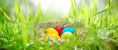 huevos de pascua en un prado