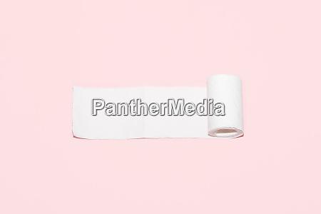 rollo de papel higienico con espacio