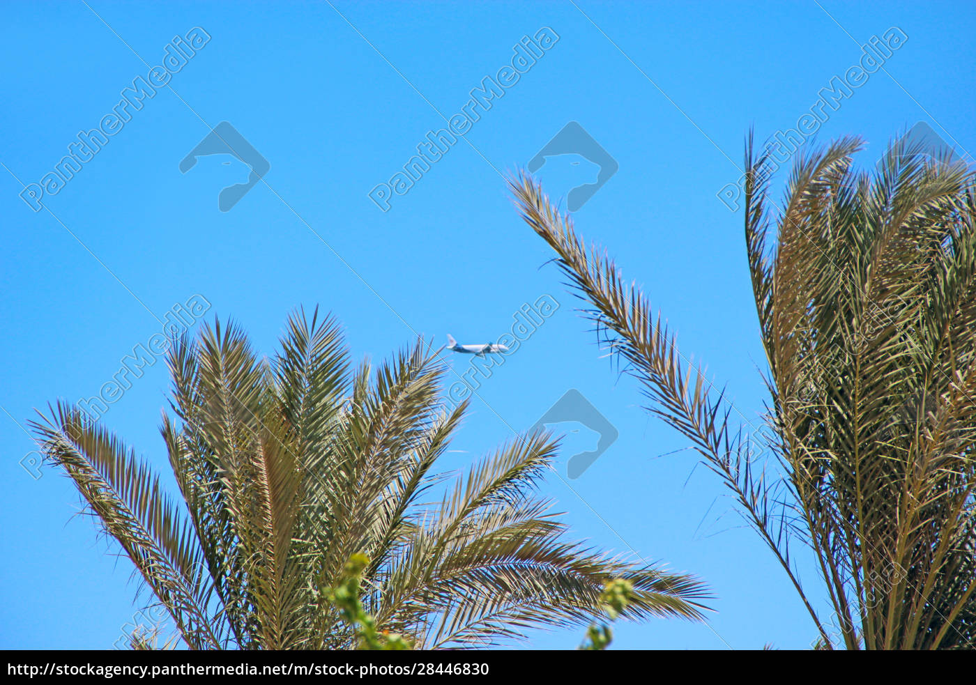 plane, flying, high, in, sky., view - 28446830