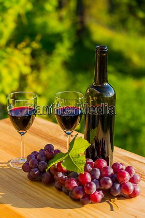 botella de vino y uvas