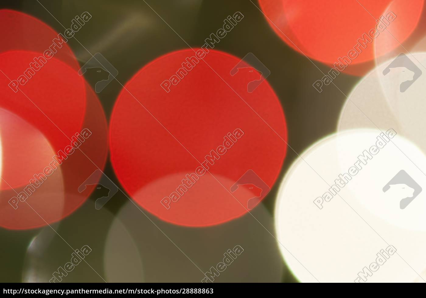 coloridos, círculos, festivos, multicolores., fondo, de - 28888863
