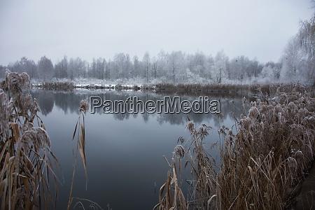 paisaje helado de invierno