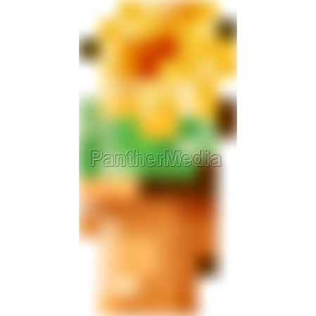ID de imagen 30357716