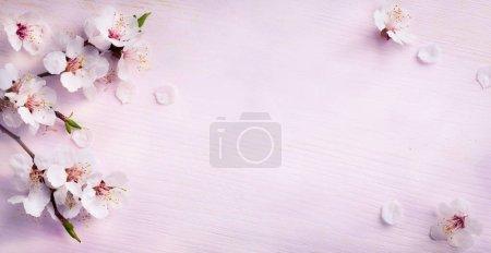 ID de imagen B137623752