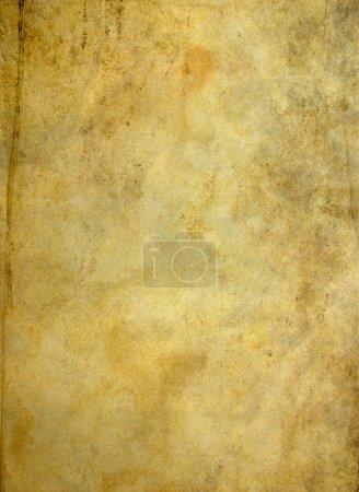 ID de imagen B1907153