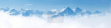 ID de imagen B11145689