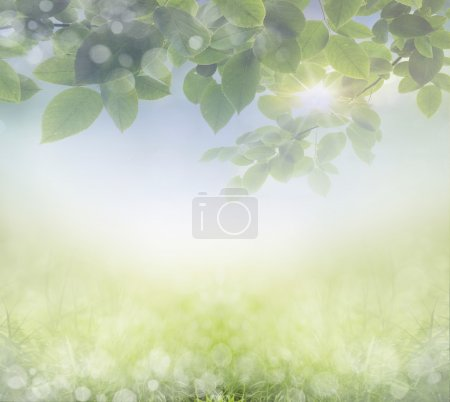 ID de imagen B64609721