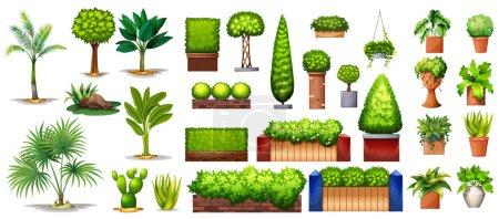 verde, Imagen, Grupo, Blanco, vector, antecedentes - B67675537