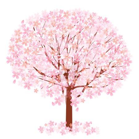 vector, hermosa, primavera, flor, árbol, cerezo - B62661365